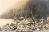 Woman & dog sitting on rocks, Lowell Point (?), Alaska, ca. 1905-1915.
