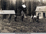 Vegetable garden, Seward, Alaska, ca. 1908.