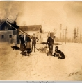 Hitching up a dog team in Seward, Alaska, ca. 1905-1915.