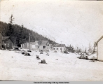 Houses in Seward, Alaska, ca. 1905-1915.