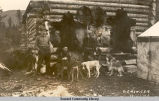 Men and dogs at cabin, Seward, Alaska, ca. 1910.