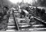Woman and dogs on railroad tracks, ca. 1910.