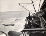 Wreck of the S.S. Yukon, 1946.
