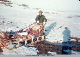 Dog sled filled with meat.