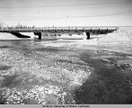 Jarvis Creek Bridge - looking upstream, May 1954.