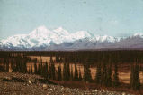 Mt. McKinley from Summit air strip. #1218.
