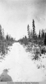 Winter trail, Fort Yukon, Alaska
