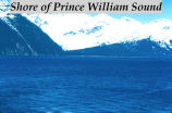 Shore of Prince William Sound.