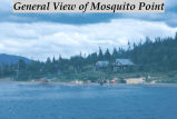 General view of Mosquito Point.