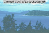 General view of Lake Aleknagik.