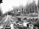 T. M. R. R. Construction train at the Junction, near Fairbanks Alaska.