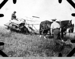 G. W. Gasser supervising reaping of barley
