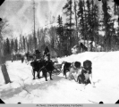 Dog team near Rampart, Alaska