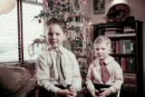 Two boys with a Christmas tree.
