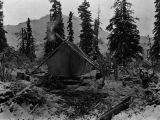 Camp at end of timber.