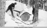 Two men sawing a round from a log with a crosscut saw