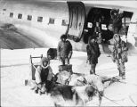 Dog team, man with puppy, men near and inside airplane.