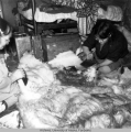 Women cleaning polar bear skin