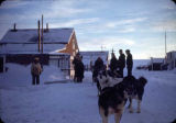 Dog team trip, Teller to Teller Mission, 1/18/50.