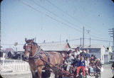 Only horse at Nome, 7/4/50.