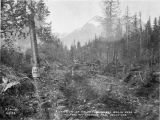 Section of Valdez-Fairbanks wagon road. At foot of Thom[p]son Pass, south side.