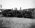 Sawmill workers standing on a pile of logs.