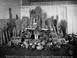 Tanana Valley, agriculture exhibit, Fairbanks, September 24, 1909.