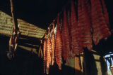 Fish drying in Kaltag.