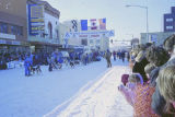 Alaskan Open North American Championship. A dog team at the start/finish line, downtown Fairbanks.