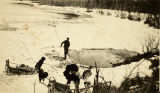 Paul Healy using a net to harvest whitefish from under the ice, Healy Lake, 1930's.