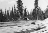 Gaither Paul working at the Davis Sawmill in North Pole, Alaska, 1951.
