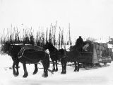 8 tons of hay, grain and car wheels passing camp 166. A. E. C. Ry, Mar. 30 - 17.