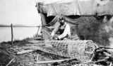Louis Clever, weaving a fishtrap from spruce bound with willow.