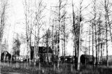 One of the nicer log cabins - about a $15,000 house up here. Fairbanks, September 1944.