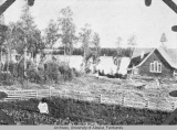Mission Garden at Tanana