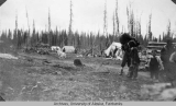 Indian camp on the Tanana