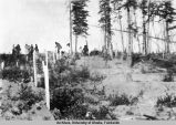 Indian graves. Nenana.