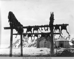 Reindeer meat drying at Gambel