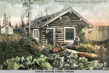 Residence and garden, First Avenue, Fairbanks, Alaska.