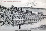 T. V. R. R. [Tanana Valley Railroad] No. 5 bridge, head of Fox Gulch.