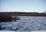 Break-up ice jam on Chena [River].