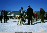 North American Championship Sled Dog Race.