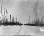Winter construction near Fairbanks 1910-1911