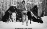 Sledge pups from Fort Gibbon postcard.