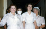 Christmas 1952, Ward 2 Nurses.