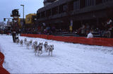Fur Rondy Sled Dog Races.