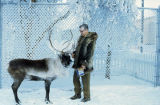 Man with pet reindeer.