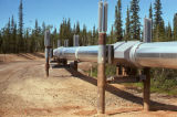 Trans-Alaska Pipeline, near the Yukon River.