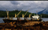 Loading Logs on Freighter. Log Sort Yard. July. Klawock, Alaska