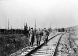 Mt. McKinley area railroad inspection.
